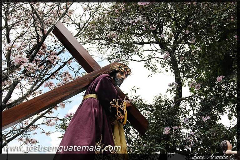 consuelo019